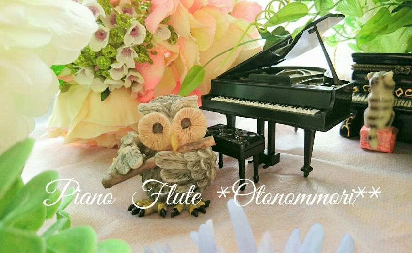 ピアノ教室 札幌音の森 ♪音楽教室 札幌西区二十四軒 ・中央区宮の森周辺 幼児ピアノ個人レッスン