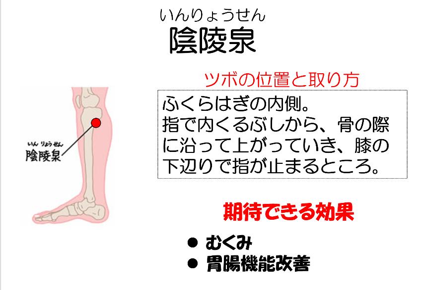 ツボ「陰陵泉」 - 妙蓮寺ゆう鍼灸院 東洋医学ブログ