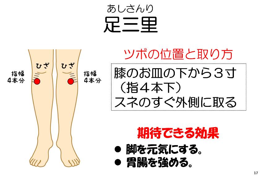 ツボ「足三里」 - 妙蓮寺ゆう鍼灸院 東洋医学ブログ