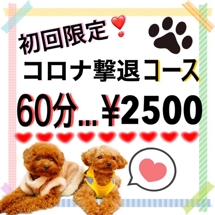 平日のみ予約可能!!ご新規様限定☆コロナ撃退コース!