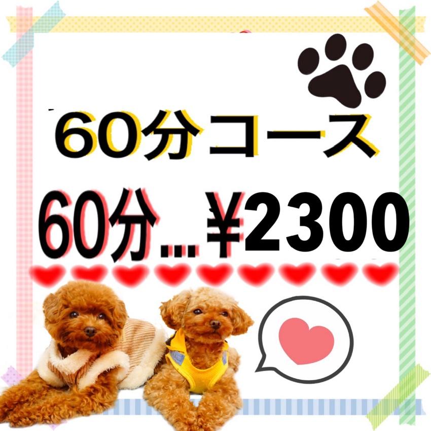 平日のみ予約可能!60分コース☆